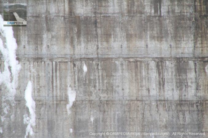 堤体コンクリート表面