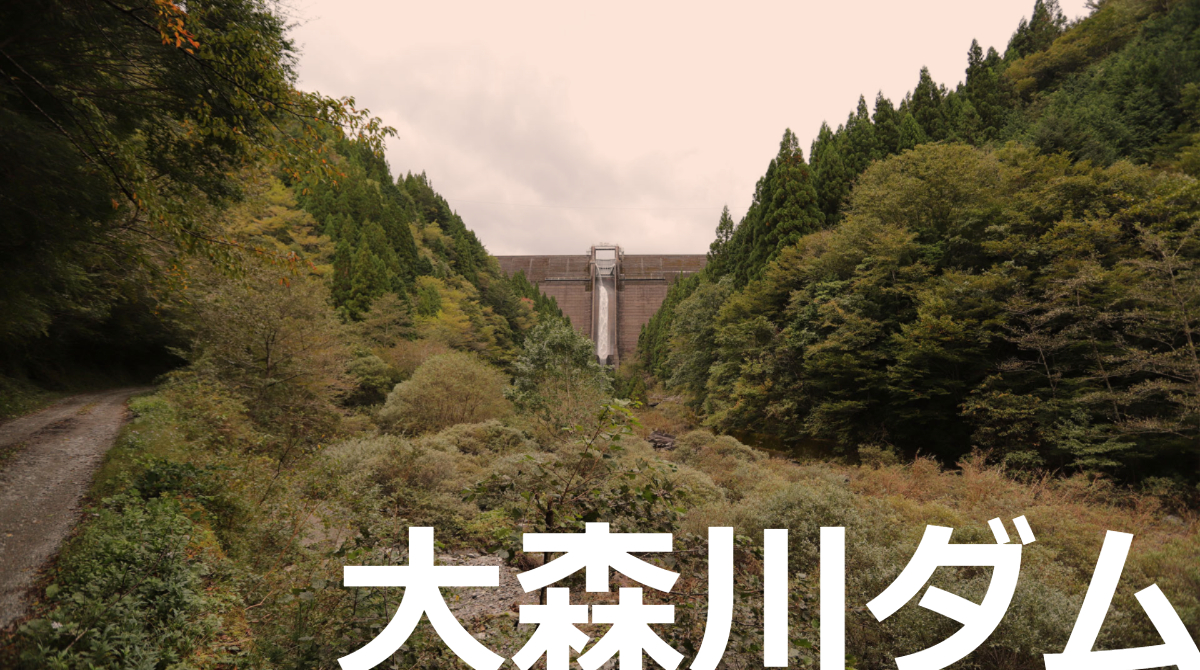 2311-大森川ダム/おおもりがわだむ