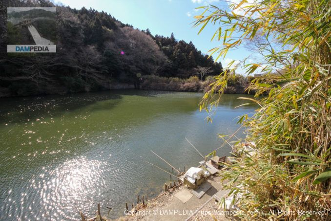 右岸道路よりダム湖と堤体上流面を望む