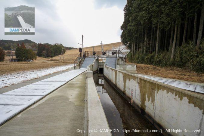 下流より分水工と堤体を望む