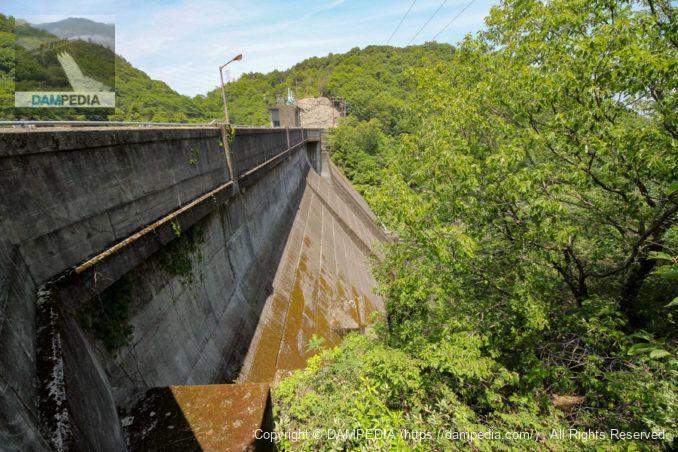 右岸より堤体下流面を望む