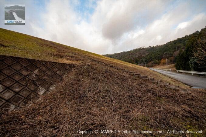 右岸の階段下より堤体下流面を見る