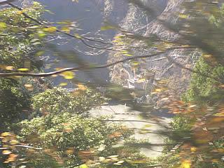 ダム湖側から奥泉ダムを望む・・・?