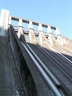 堤体下流側直下より堤体を望む