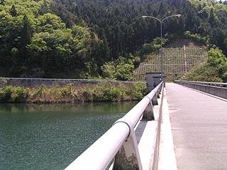右岸より堤体(ダム湖側)を望む