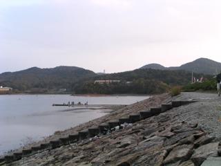 右岸より堤体ダム湖側を望む