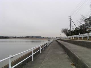 配慮されたダム湖岸